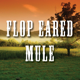 flop eared mule full tempo backing track