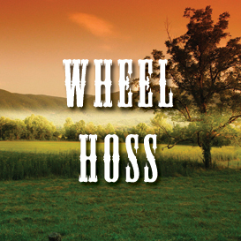 Wheel Hoss Multi Tempo Backing Tracks | Music | Acoustic