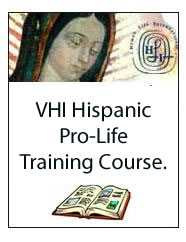 "MODULE 6: THE ""CULTURE"" OF DEATH ATTACKS HISPANICS IN THE U.S. - VHI Hispanic Pro-Life Training Course. 