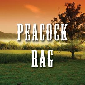 peacock rag full tempo backing track