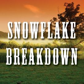 Snowflake Breakdown Full Tempo Backing Track | Music | Acoustic