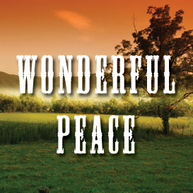 Wonderful Peace Backing Track | Music | Acoustic