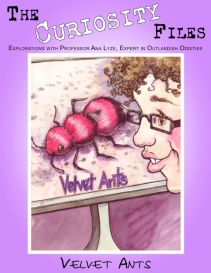 The Curiosity Files-Velvet Ants