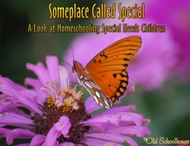 Someplace Called Special: A Look at Homeschooling Special Needs Children