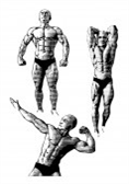 A Guide To Effective Body Building. | eBooks | Sports