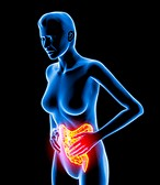 The Definitive Guide To Managing Irritable Bowel Syndrome   eBooks   Health