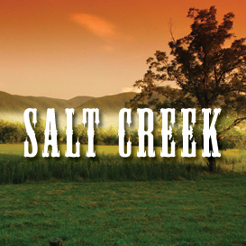 salt creek multi tempo backing tracks