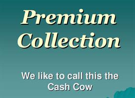 Premium Collection - We like to call this the Cash Cow by Paul Brittain | Audio Books | Business and Money