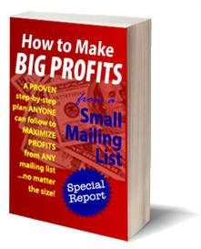 How to Turn a Tiny Mailing List into BIG PROFITS | eBooks | Business and Money