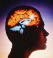 Hypnosis Audio Stop Smoking | Audio Books | Self-help