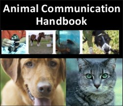 Animal Communication Handbook | eBooks | Pets