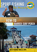 sportfishing with dan hernandez how to barred surf perch