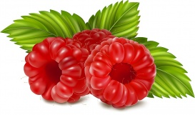 vectorlib rf (standard license): vector illustration of ripe raspberries.
