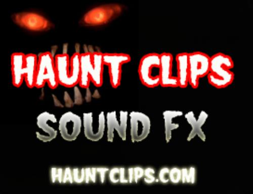 First Additional product image for - Haunted Wind