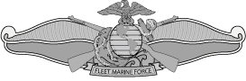 Fleet Marine Force (FMF) Badge AI File [2437] | Other Files | Graphics