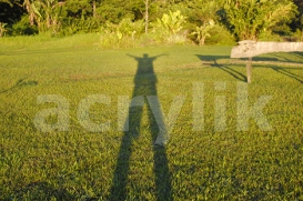 Early Morning Shadow Photo | Photos and Images | Nature