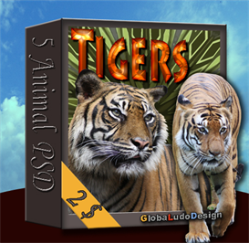 Tiger PSD pack | Photos and Images | Animals