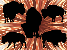 5 American Buffalo Silhouette Vectors | Other Files | Graphics