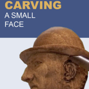 Carving a Small Face