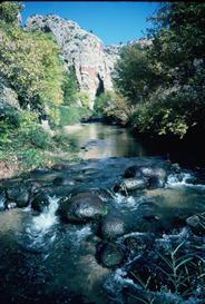 Deer Creek Shoals Hi-Res Image   Photos and Images   Nature