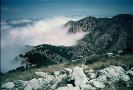 Fog - Guadalupe Peak Hi-Res Image | Photos and Images | Nature