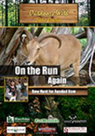 on the run again