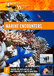 Travel Wild Marine Encounters | Movies and Videos | Documentary