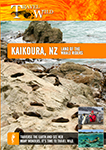 Travel Wild Kaikoura New Zealand Land of the Whale Riders | Movies and Videos | Documentary