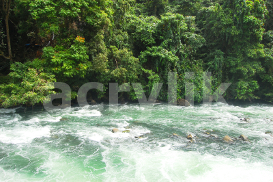 Raging White River photo | Photos and Images | Nature