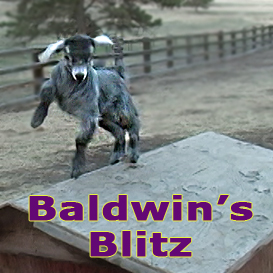 Baldwin's Blitz- | Movies and Videos | Music Video