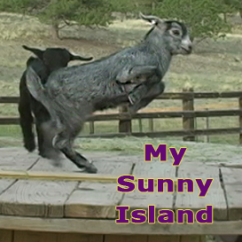 My Sunny Island | Movies and Videos | Music Video