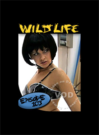 the wild life episode 3