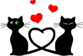 cats in love - machine embroidery file