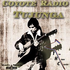 spirit gun by thc the hippy coyote