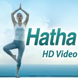 Vol 2. Hatha Yoga 15 HD Quality Videos