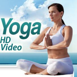 Vol 3. Hatha Yoga 15 HD Quality Videos
