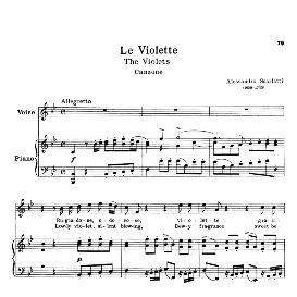 Le violette, High Voice in B Flat Major, A.Scarlatti. For Soprano, Tenor. Schirmer (PD) | eBooks | Sheet Music