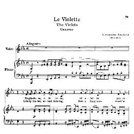 Le violette, Low Voice in E-Flat Major, A. Scarlatti. Transposition for Low Voice. For Bass, Contralto, Countertenor. Ed. Schirmer. | eBooks | Sheet Music