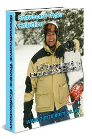 Snowboard Ticks Collection