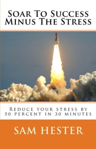 Soar to Success Minus the Stress eBook | eBooks | Health