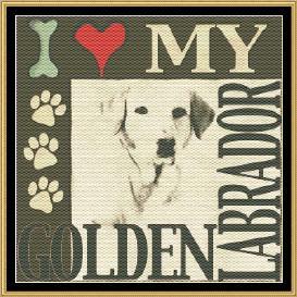 i love my golden labrador