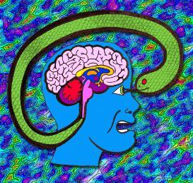 the triune (human) brain friend or foe