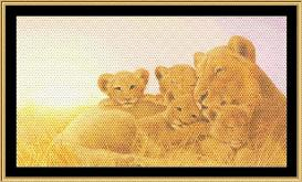a mother's love collection lioness & cubs