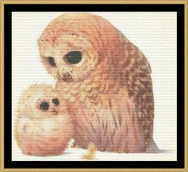 a mother's love collection  owl & owlet
