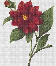 Peony Cross Stitch Pattern | Other Files | Arts and Crafts