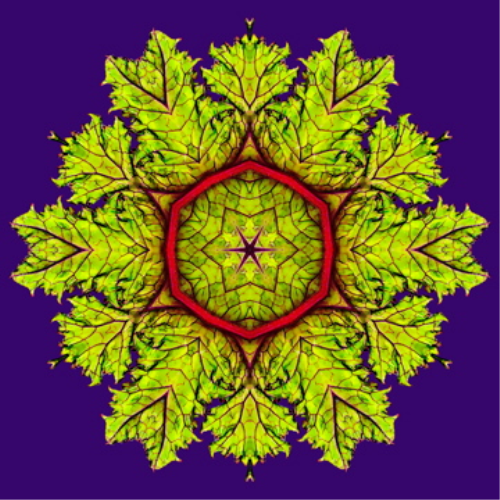 Fourth Additional product image for - Kaleidoscope Maker for Adobe Photoshop Mac or PC