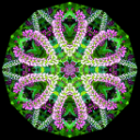 Kaleidoscope Maker for Adobe Photoshop Mac or PC | Software | Add-Ons and Plug-ins