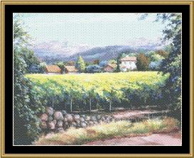 VINEYARD COLLECTION Silverado Trail Napa