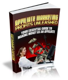 affilliate marketing profits