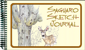saguaro sketch journal